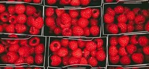 Berry Hacks – How to Keep Berries Fresher for Longer